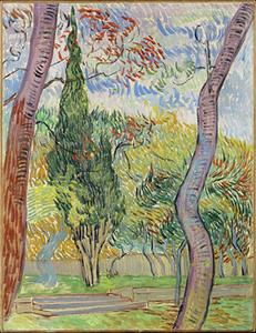 Van Gogh: Park in het St. Paulus Ziekenhuis